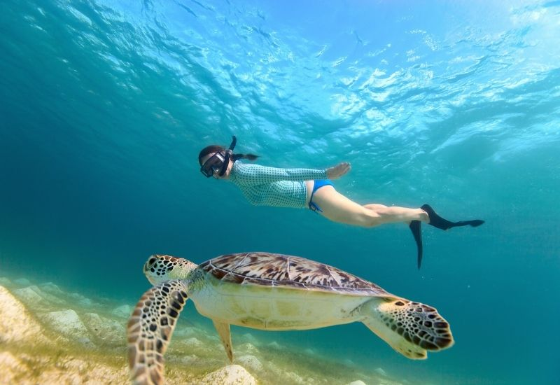 tourism-eco-sustainable